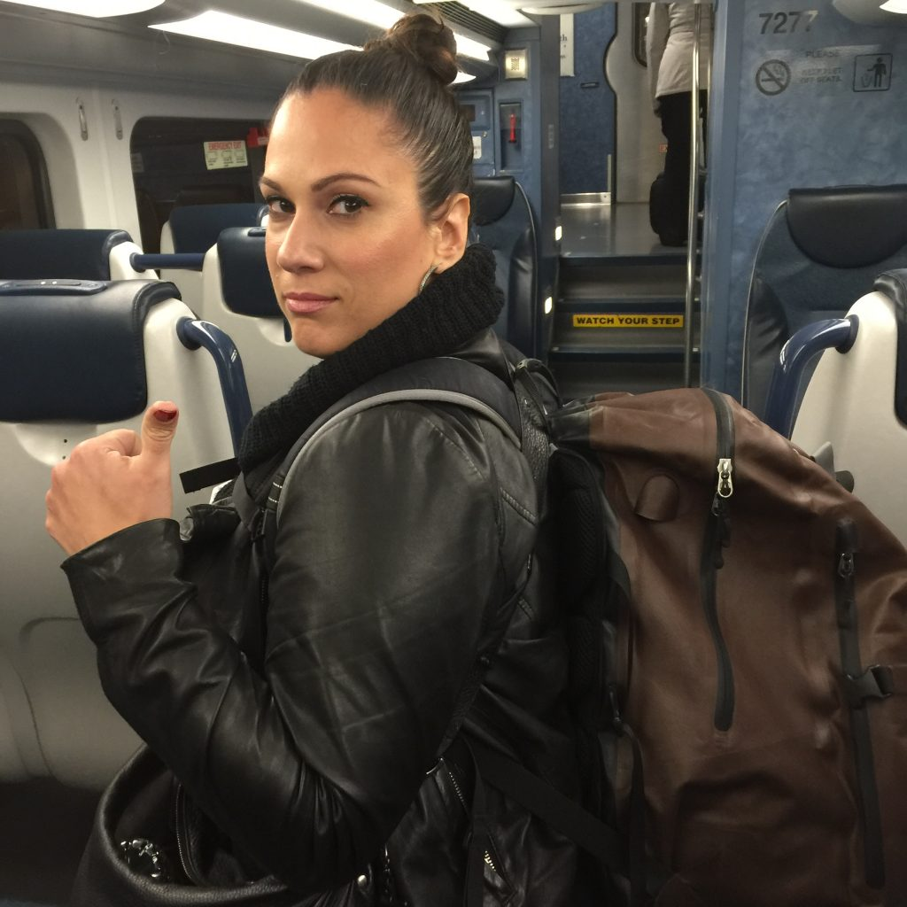 backpack traveling on train